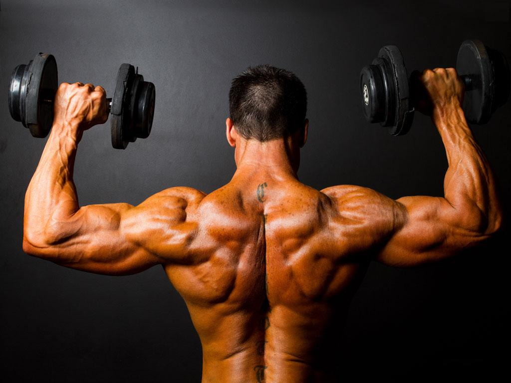 Steroids for Muscles